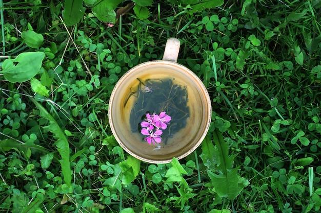 緑の夏の草の上のセラミックカップに医療用ファイアウィードの新鮮な紫色の花と葉を持つ天然ハーブティー。