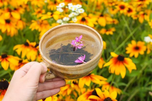夏のルドベキアの花の背景に手にセラミックカップでファイアウィード植物の紫色の花と天然ハーブティー。