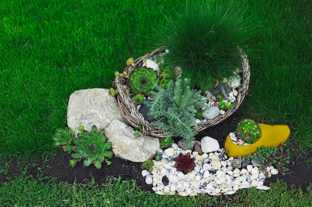 Natural home decoration with green grass, flowers and white stones
