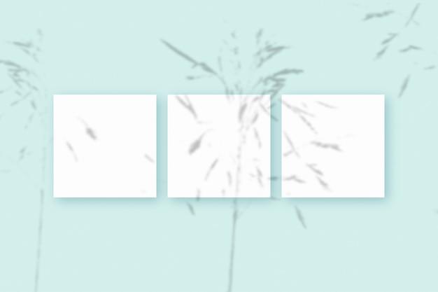 Естественный свет отбрасывает тени травы на 3 квадратных листа белой текстурированной бумаги, лежащих на синем фоне текстуры.