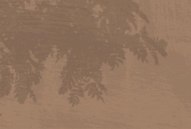 Естественный свет отбрасывает тени от ветки рябины на стену.