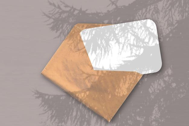 Естественный свет отбрасывает тени от еловой ветки на конверт с листом