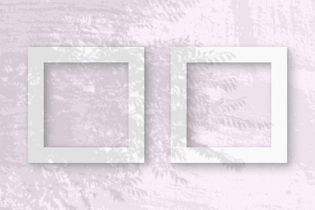 자연광은 흰색 질감 종이 2 개 정사각형 프레임에 이국적인 식물의 그림자를 드리 웁니다.