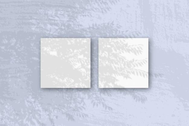 자연광은 흰색 질감 종이 2 장에 이국적인 식물의 그림자를 드리 웁니다.
