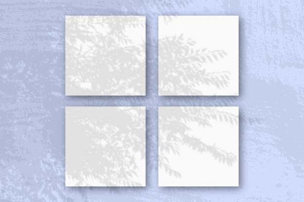 자연광이 흰색 질감 종이 4 장에 이국적인 식물의 그림자를 드리 웁니다.
