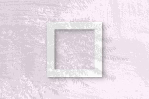 자연광은 흰색 질감 종이의 이국적인 식물 사각형 프레임에서 그림자를 투사합니다.