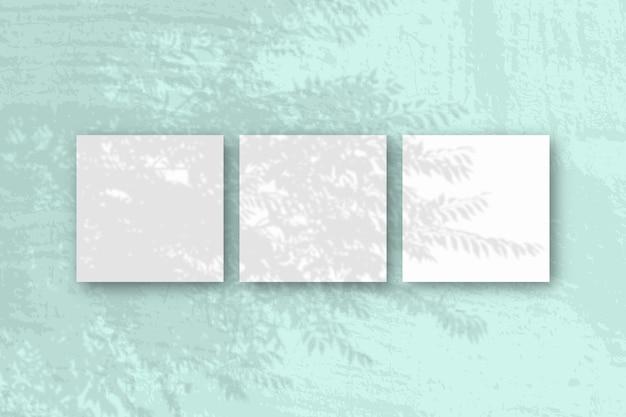 자연광은 녹색 배경에 누워 흰색 질감 종이의 이국적인 planton 사각형 시트에서 그림자를 캐스팅