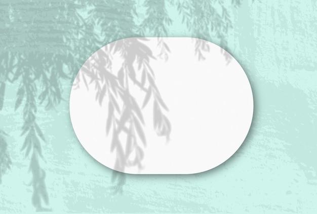 自然光が白い織り目加工の紙の水平の楕円形のシートに柳の枝から影を落とします