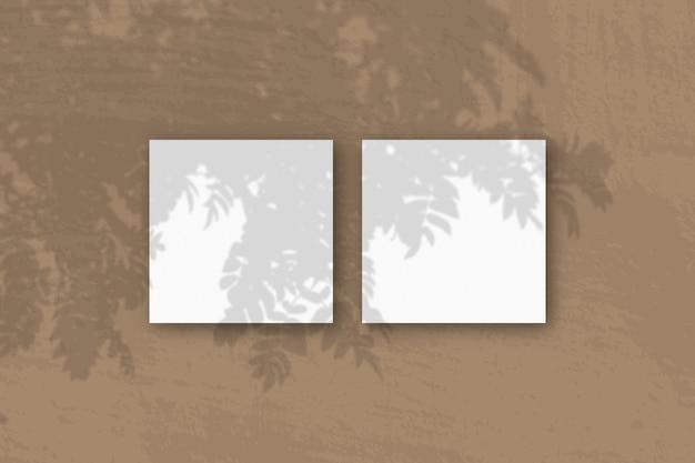 자연광이 흰색 질감 종이 2 개에 로완 지점의 그림자를 드리 웁니다.