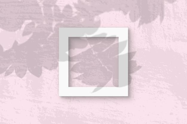 자연광은 흰색 질감 종이의 사각형 프레임에 로완 지점에서 그림자를 투사합니다.