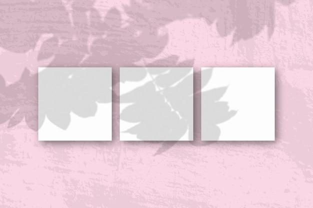 자연광은 분홍색 배경에 흰색 질감 종이의 정사각형 시트에 로완 지점에서 그림자를 드리 웁니다.