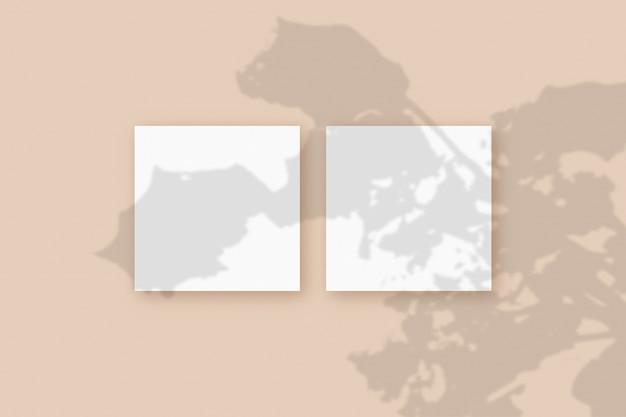 자연광은 베이지색 질감 배경에 놓인 2개의 정사각형 흰색 종이에 식물의 그림자를 드리웁니다. 모형.