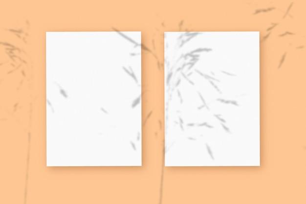 自然光は、ベージュのテクスチャ背景の上に横たわる、白いテクスチャ紙フォーマットの2枚の垂直シートに植物から影を落とします。モックアップ。