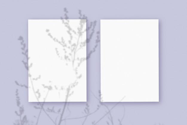 자연광은 보라색 질감 배경에 놓인 흰색 질감 종이 형식의 수직 시트 2장에 식물의 그림자를 드리웁니다. 모형.