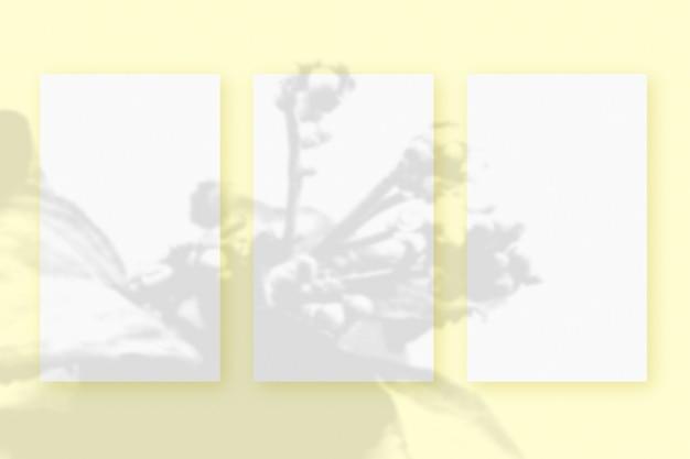 自然光は、黄色のテクスチャ背景の上に横たわる、白いテクスチャ紙フォーマットの3枚の垂直シートに植物から影を落とします。モックアップ。