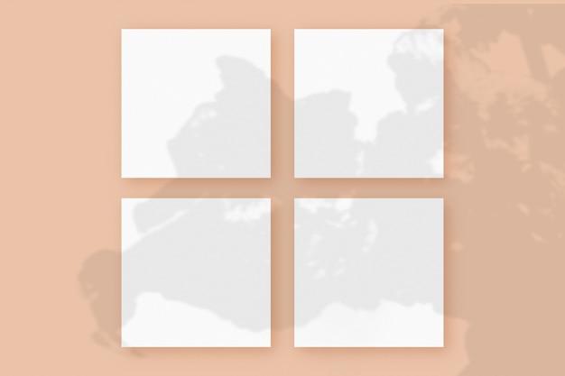 자연광은 베이지색 질감 배경에 놓인 4개의 정사각형 흰색 종이에 식물의 그림자를 드리웁니다. 모형.