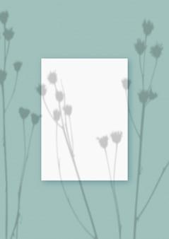 자연광은 녹색 질감 배경에 놓인 흰색 a4 용지의 수직 직사각형 시트에 식물의 그림자를 드리웁니다. 모형.