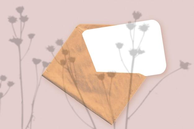 Естественный свет отбрасывает тени от растения на конверт с листом белой бумаги, лежащим на розовом текстурированном фоне. макет.