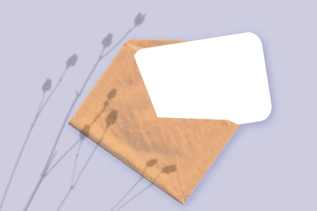 자연광은 보라색 질감의 배경에 흰 종이가 놓여 있는 봉투에 식물의 그림자를 드리웁니다. 모형.