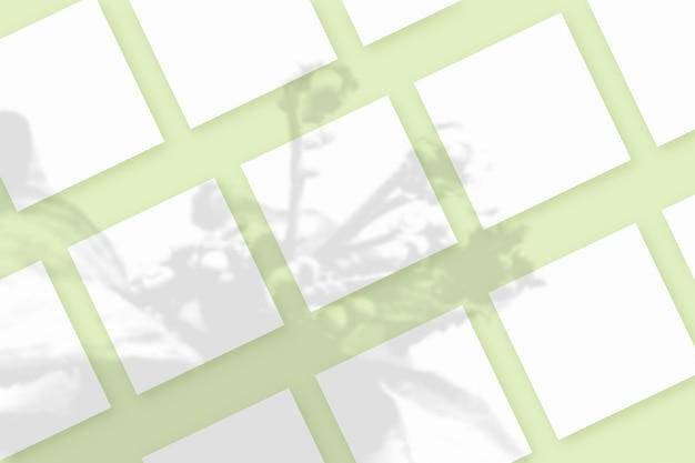 自然光は、緑のテクスチャ背景に横たわっている白い紙のいくつかの正方形のシートに植物から影を落とします。モックアップ。