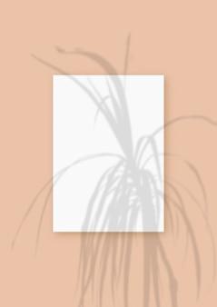 자연광은 베이지색 질감 배경 위에 놓인 흰색 질감 종이 형식의 수직 시트에 식물의 그림자를 드리웁니다. 모형.