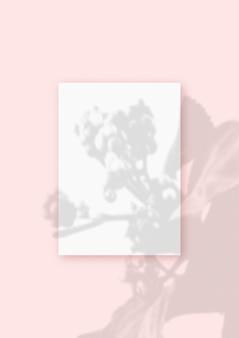 자연광은 분홍색 질감 배경에 누워 있는 흰색 질감 종이 형식의 수직 시트에 식물의 그림자를 드리웁니다. 모형.