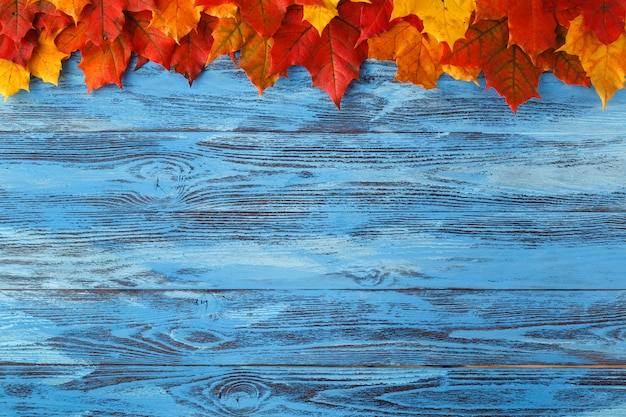 Natural maple leaves as frame on wooden background