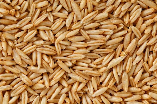 Natural oat grains
