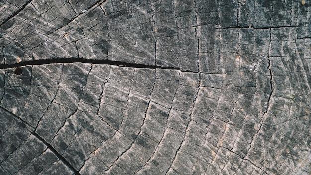 自然な古い木の質感