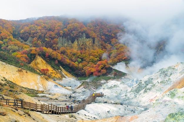 일본 국립 공원의 천연 온천