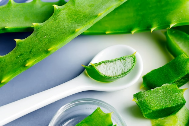 Natural organic aloe vera slices in a ceramic spoon on a light grey background.