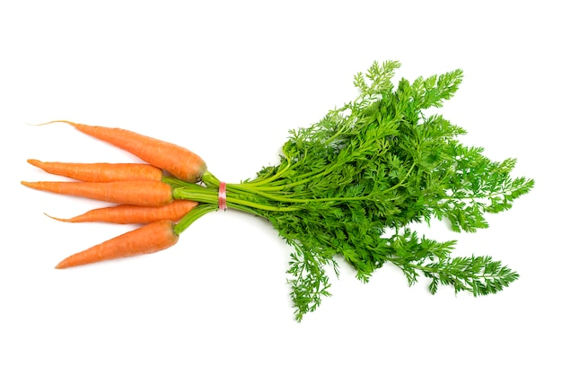 Natural organic carrot lies on white  background