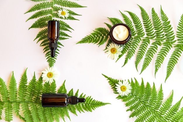 白い背景にシダの葉とハーブとカモミールエッセンシャルオイルを使用した天然有機化粧品。健康な肌のためのスキンケアルーチン