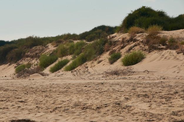 Природные песчаные дюны на сицилийском пляже