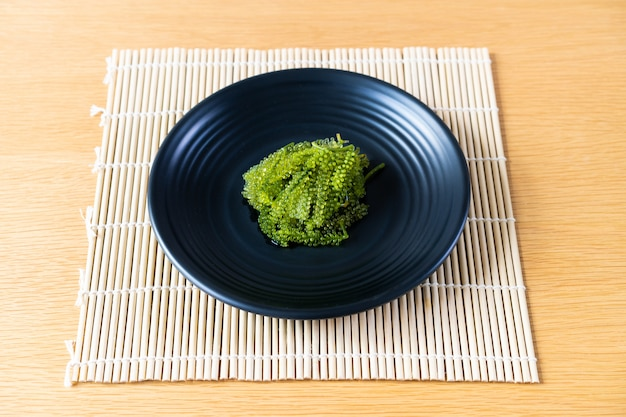 Natural sea grapes close up served in the luxury black stone plate in the japanese restaurant.