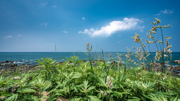 Natural sea view