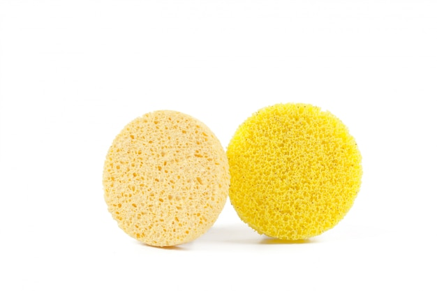 Natural sponges, isolated