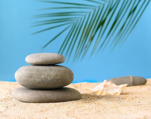 푸른 배경에 야자수 잎이 있는 모래 위의 자연석과 조개
