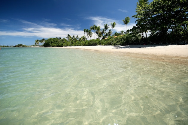 Natural swimming pool in the paradise, morro de sao paulo, salvador, brazil