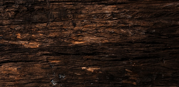 Natural texture wood background for your design free photo