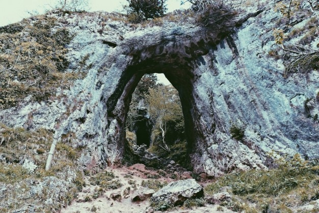 자연 터널