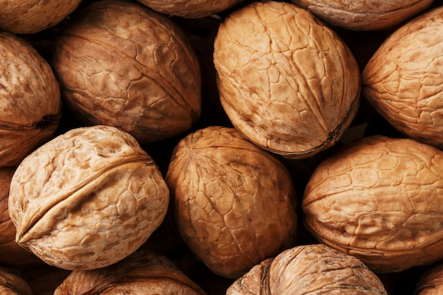 Natural walnuts in shell  dramatic contrast