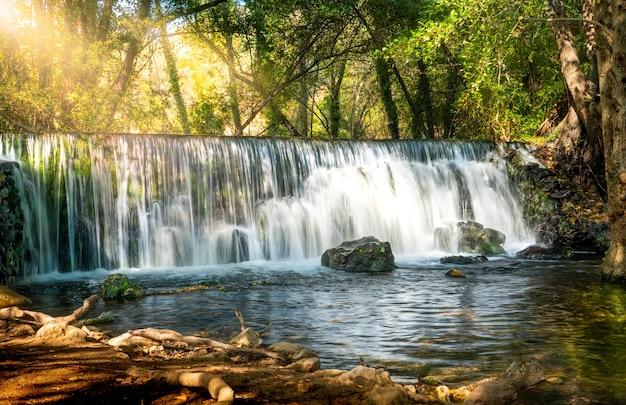 Естественный водопад в лесу с солнечным светом между растительностью и скалами
