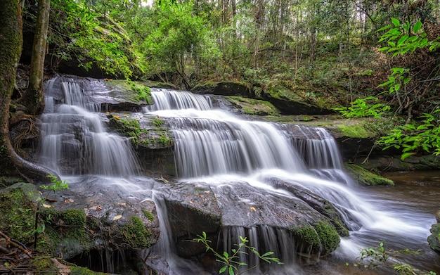 Natural waterfall, water flow, wildlife