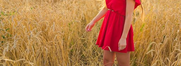 Концепция природы, осени, отпуска и людей - крупным планом женщины на пшеничном поле.
