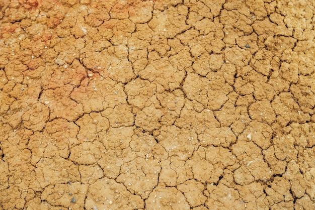 Nature background of cracked dry lands. natural texture of soil with cracks. broken clay surface of barren dryland wasteland close-up. full frame to terrain with arid climate. lifeless desert on earth