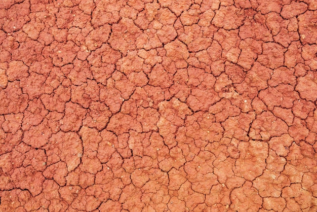 Nature background of cracked dry lands.