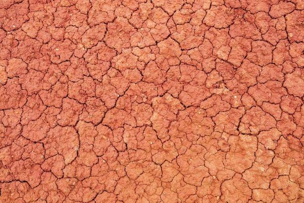 Предпосылка природы потрескавшихся засушливых земель.