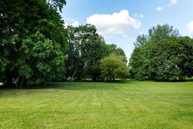 自然の背景、牧草地のある公園