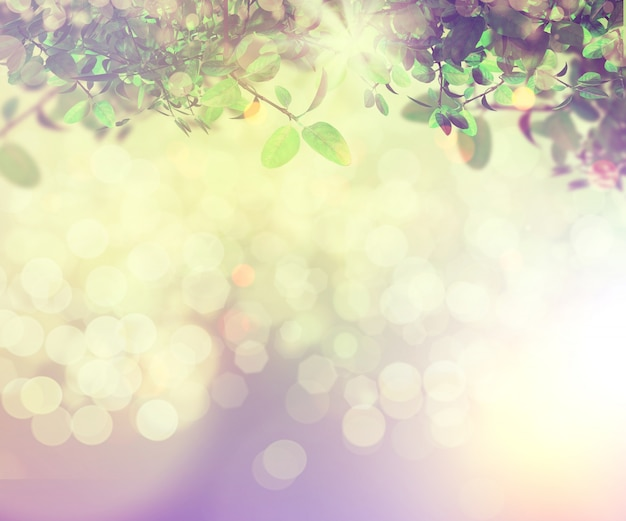 Nature background with bokeh effect
